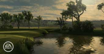 Tiger Woods PGA TOUR 11 (image 3)
